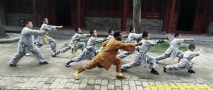 Chinese Wushu Guan Camp