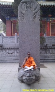 Shaolin Wushu Warrior Monk