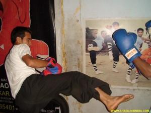 Shaolin Wushu Warrior Master