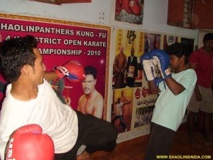 Shaolin Sanda Academy