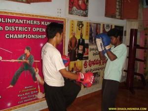 Sanda Training Master