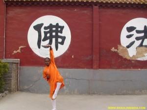 Shaolin Tai chi Monk
