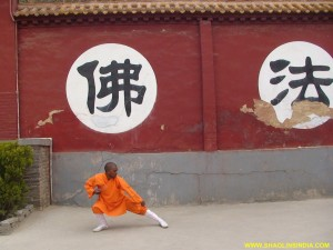 Shaolin Temple Tai chi Training