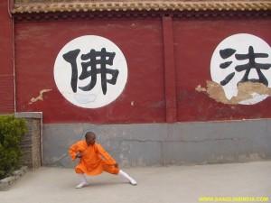 Shaolin Tai chi Master