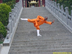 Shaolin Wushu Monk India