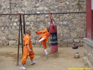Shaolin Kung-fu Sanda Trainer