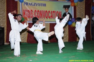 Shaolin High Kick India