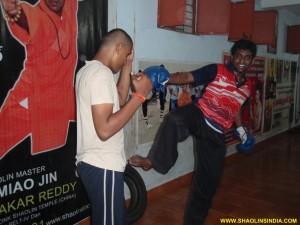 Shaolin Kung-fu Combat AP