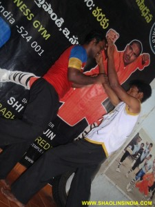 Shaolin Kung-fu Sanda