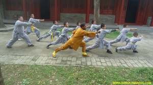 Indian Kung-fu Master Shifu Prabhakar Reddy