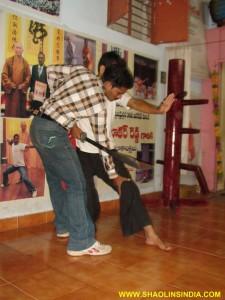Shaolin Wushu Warrior