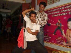 Shaolin Wushu Master