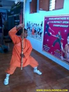 Shaolin Kung fu Taolu