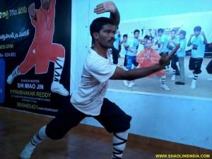 Shaolin Fist