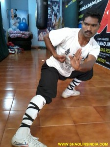 Shaolin Kungfu Training