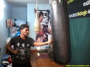 Shaolin Punches Kungfu