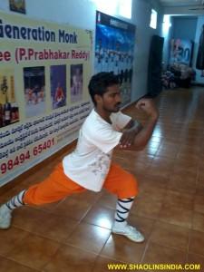 Shaolin Kung fu Martial arts Indian Kung fu