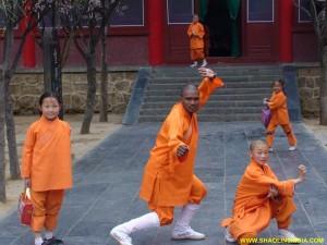 Shaolin Kung fu Practice Shifu