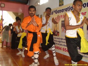 Shaolin Martial arts Trainer