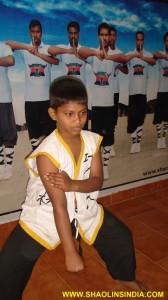 Shaolin Wushu Taolu Academy