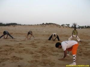 Shaolin Kung fu Martial arts