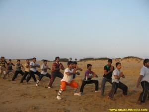 Shaolin Kung fu Forms Trasining