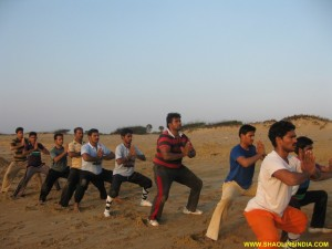 Training Kung fu India