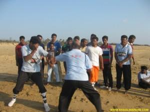 Kung fu Sanda Training
