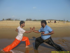 Shaolin Kung fu Techniques
