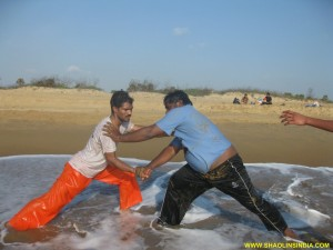 Shaolin Kung fu Secretes