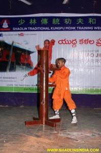 Shaolin Kung fu Wooden Dummy