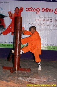 Shaolin Kung fu Warrior Master