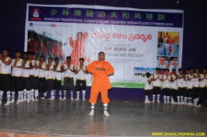 Demonstrate Kung fu