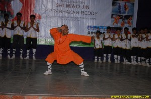 Shaolin Animal Kung fu