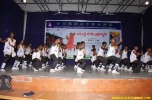 Shaolin Kung fu Taolu Training