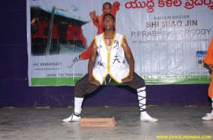 Shaolin Kung fu Stunts India