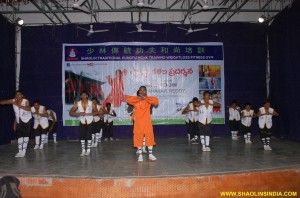 Kung fu Taolu Training