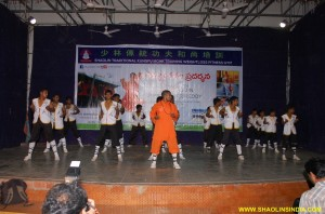 Indian Kung fu Martial arts