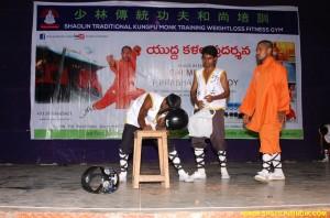 Shaolin Kung fu Power