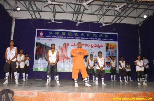 Shaolin Temple Kung fu Forms Demonstrate