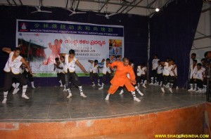 Shaolin Kung fu Warrior Training