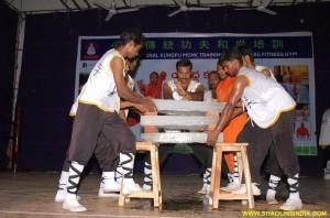 Shaolin Kung fu Show
