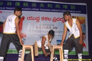 Shaolin Kung fu Monk Stunts