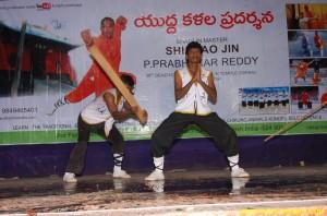 Kung fu Stunts