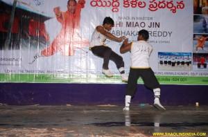 Shaolin Kung fu Hand Combat