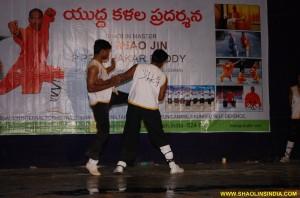 Shaolin Sanda