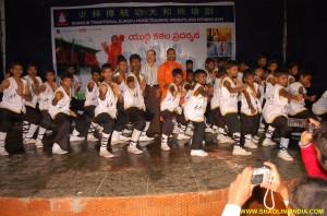 Kung fu India