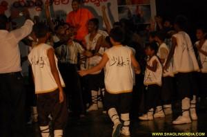 Shaolin Wushu Kungfu