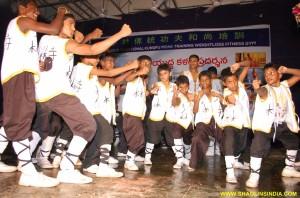 Shaolin Martail arts
