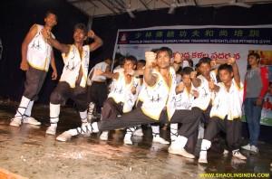 Shaolinsindia Kungfu